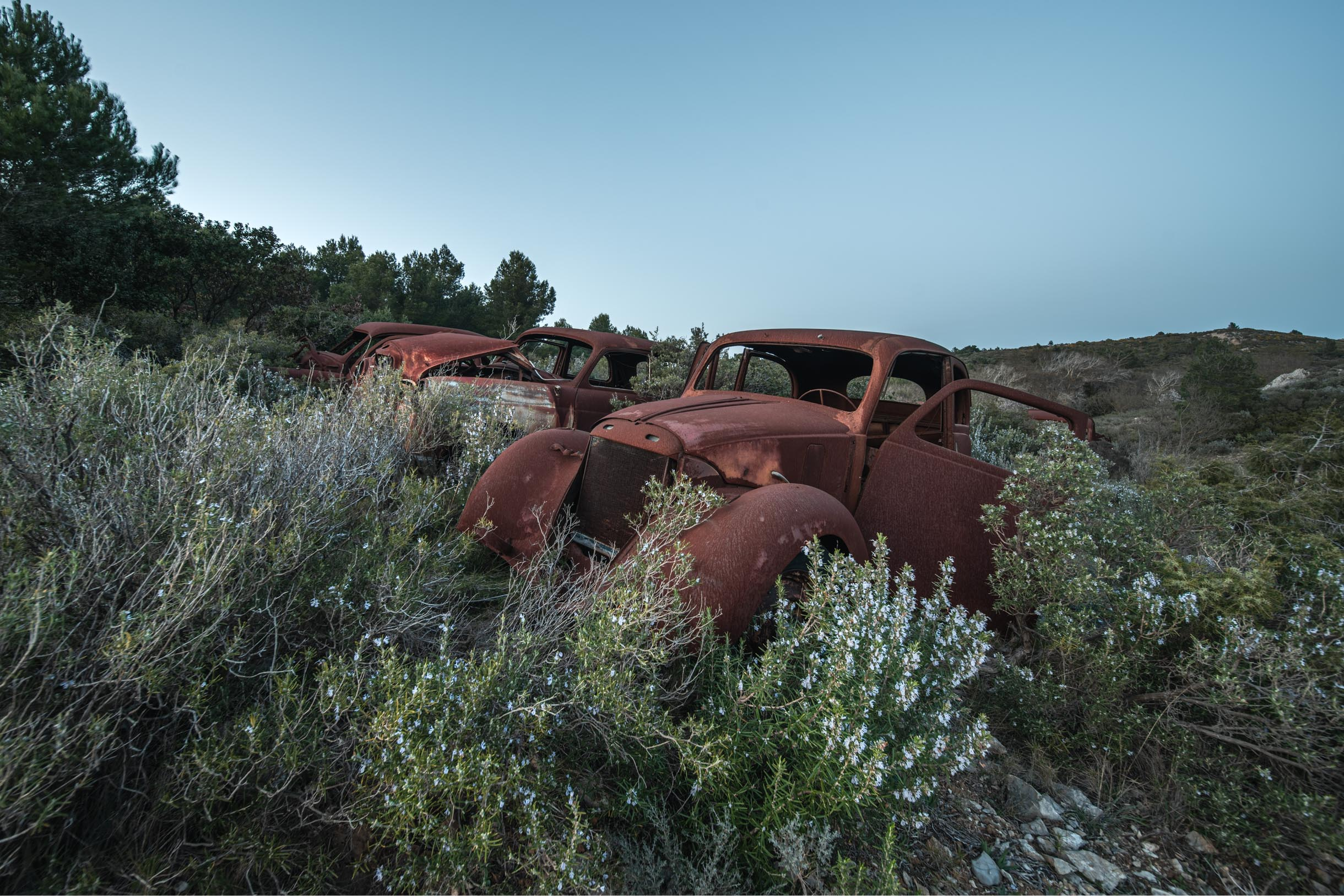Lost Rusty Cars